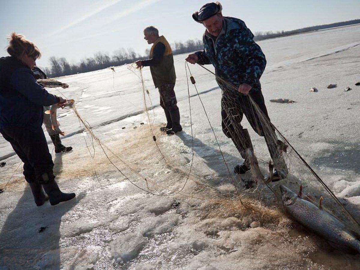 рыбалка на ирдягинских прудах