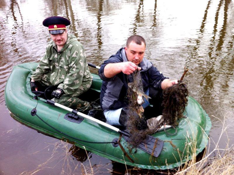 сроки запрета рыбной ловли в костромской области