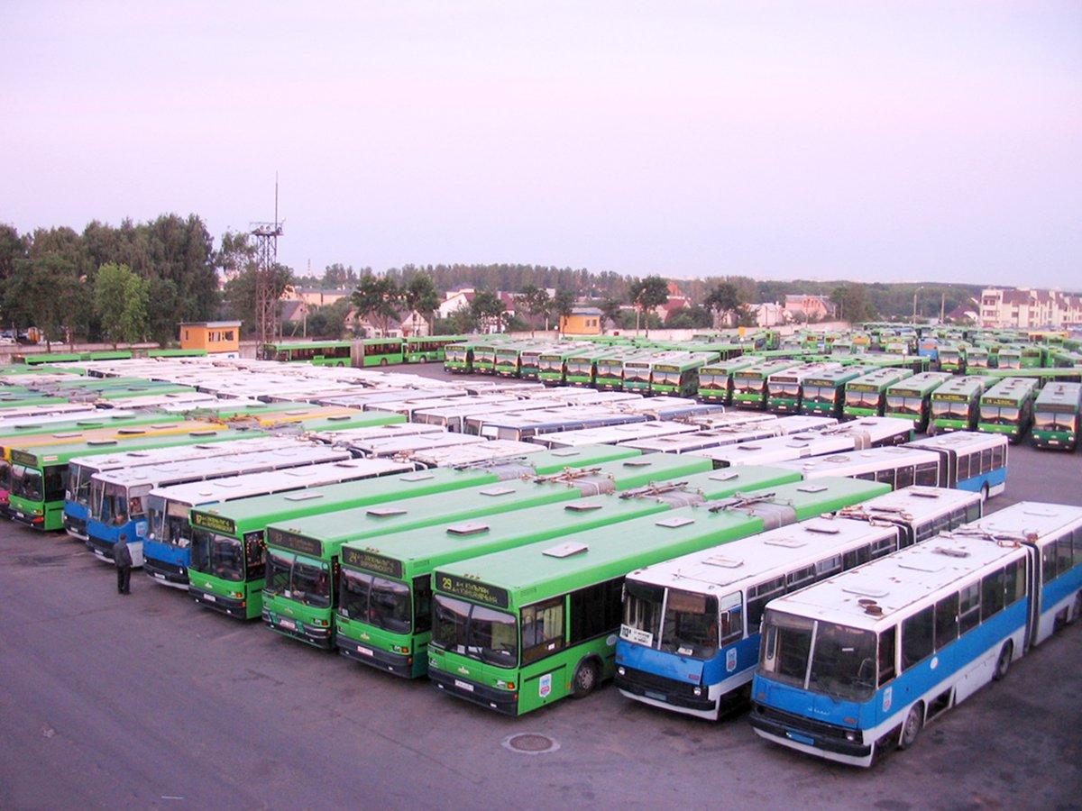 перчатки автопарк автобусов картинки про